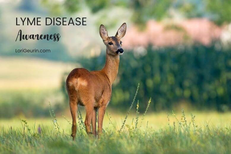 Here's a list of resources for Lyme disease awareness to help you learn more about Lyme disease and protecting your loved ones.