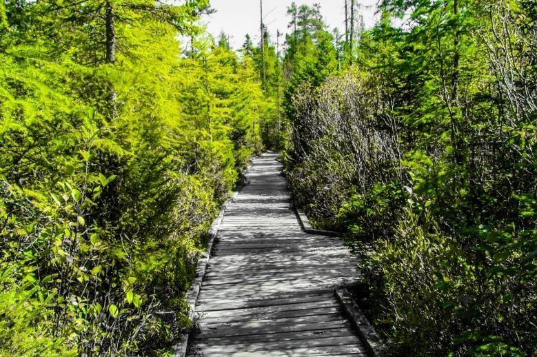 outdoor walking trail