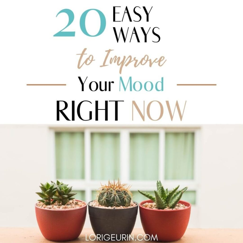 20 ways to improve your mood quickly and naturally and 3 cactus in pots in a window