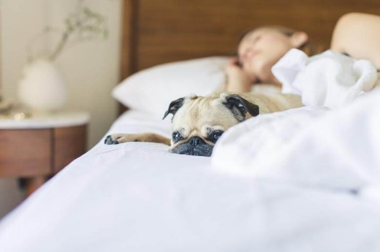 a chronically ill woman alseep in bed with her dog