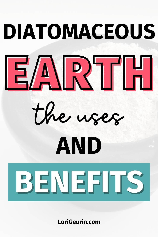 benefits of diatomaceous earth / DE in a bowl
